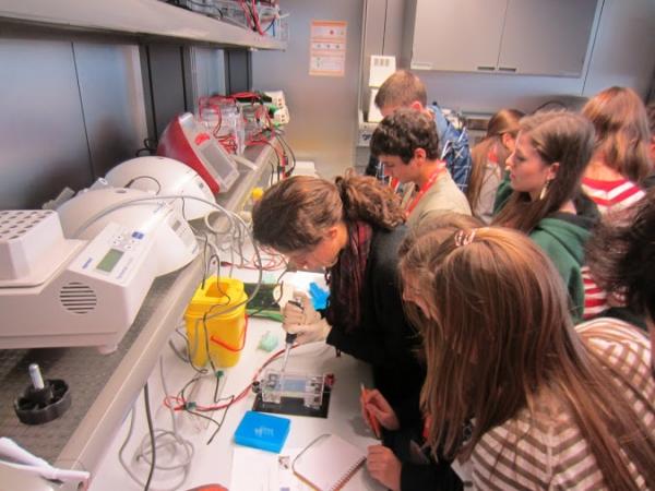 Treballs de síntesi i projecte de recerca