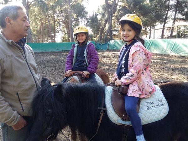 Cavalls i esport