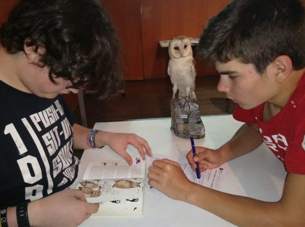 Sortida al Museu de Ciències Naturals de Barcelona