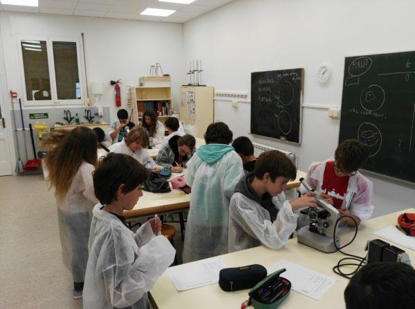 A 1r d'ESO experimentem amb la ciència!