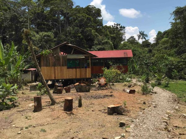 Les noies i els nois de 1r d'ESO hem viscut una experiència a l'Amazones!